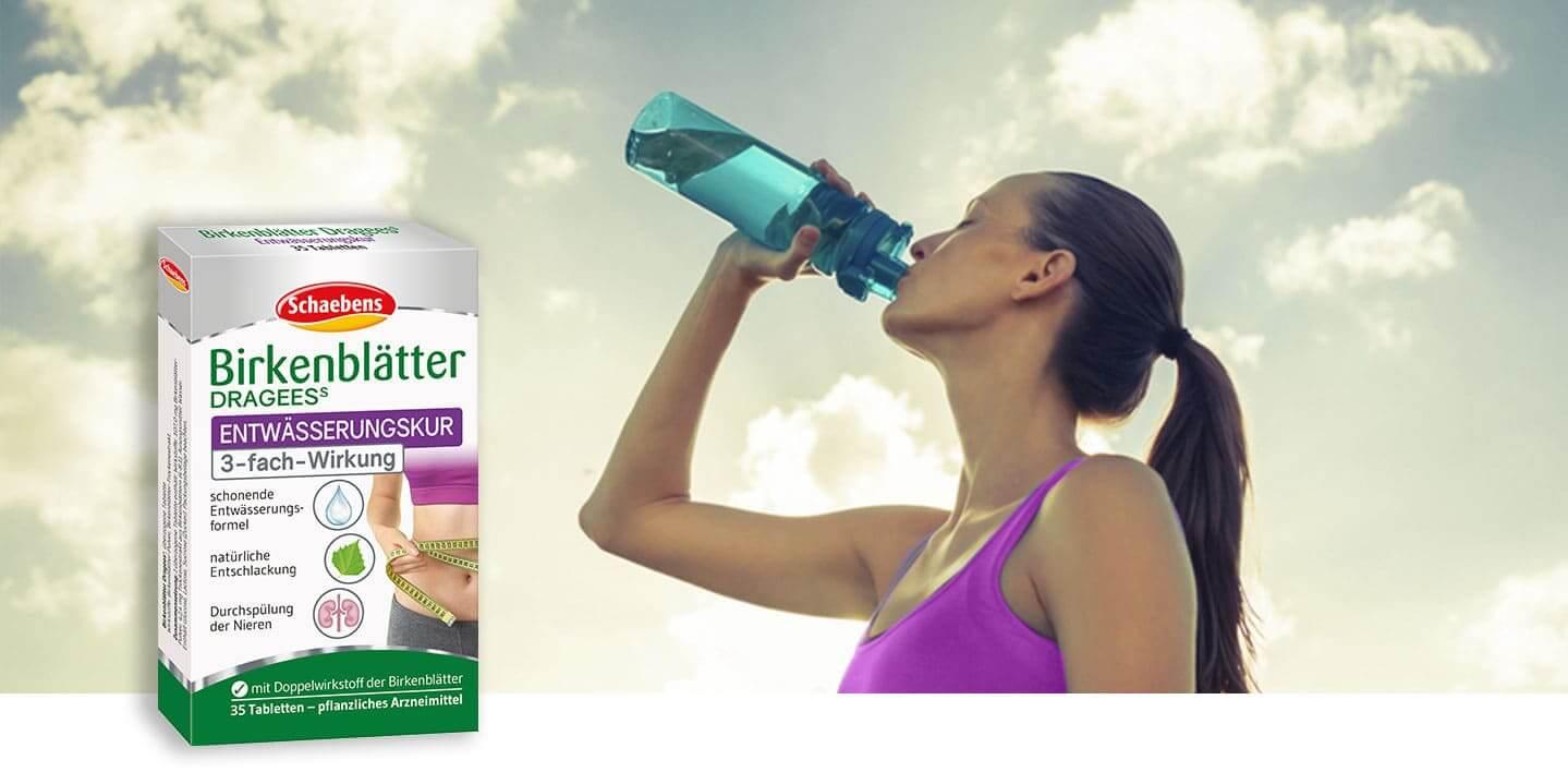 birkenblaetter-dragees-nahrungsergaenzungsmittel-doppelwirkstoff-schaebens-entwaessert-entschlackt-schonend-pflanzlich-kur-header