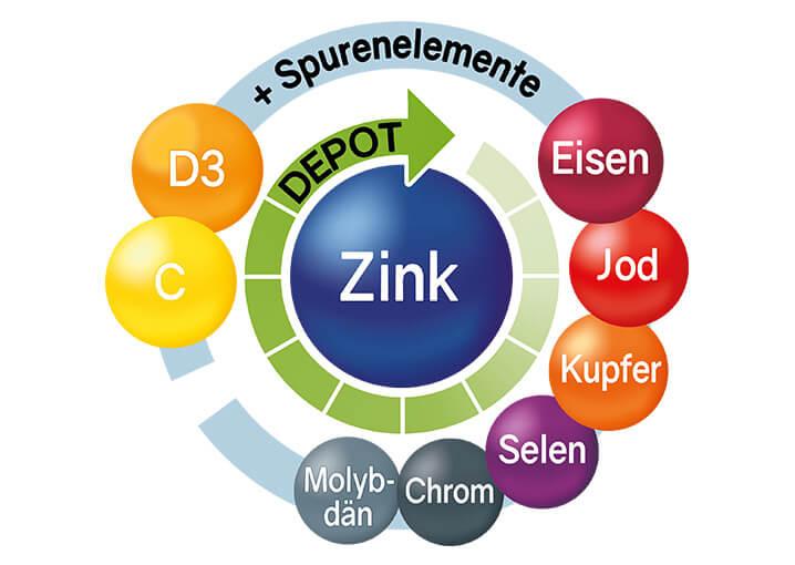 schaebens-zink-immunkur