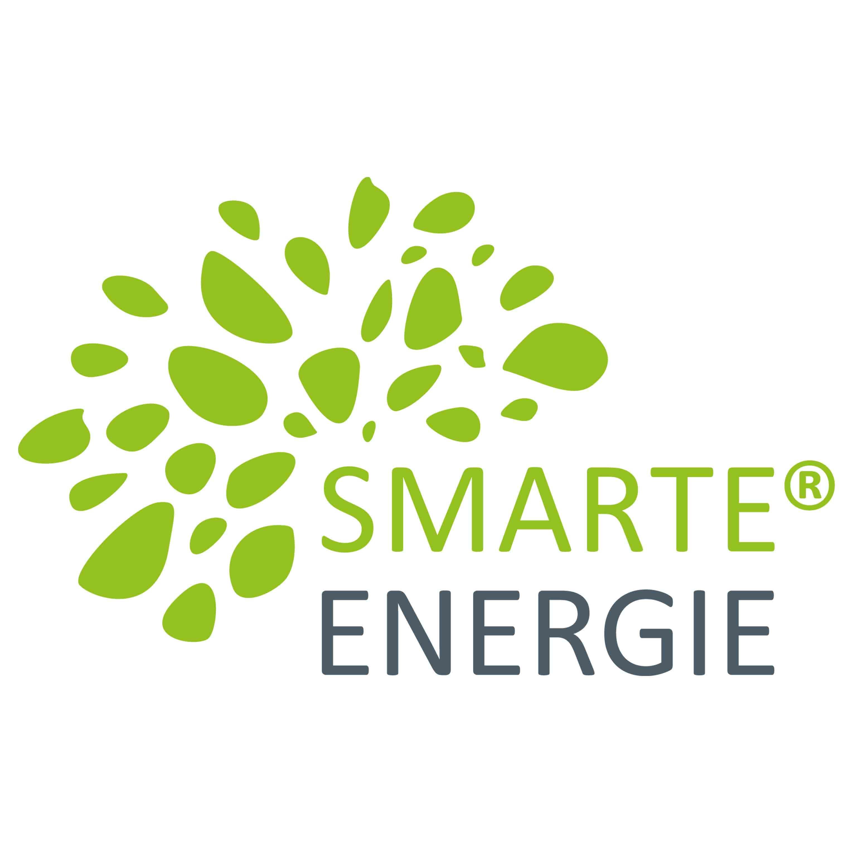 smarte-energie-gmbh-haus-schaeben-schaebens-energieberatung-nachhaltigkeit-umwelt-klima