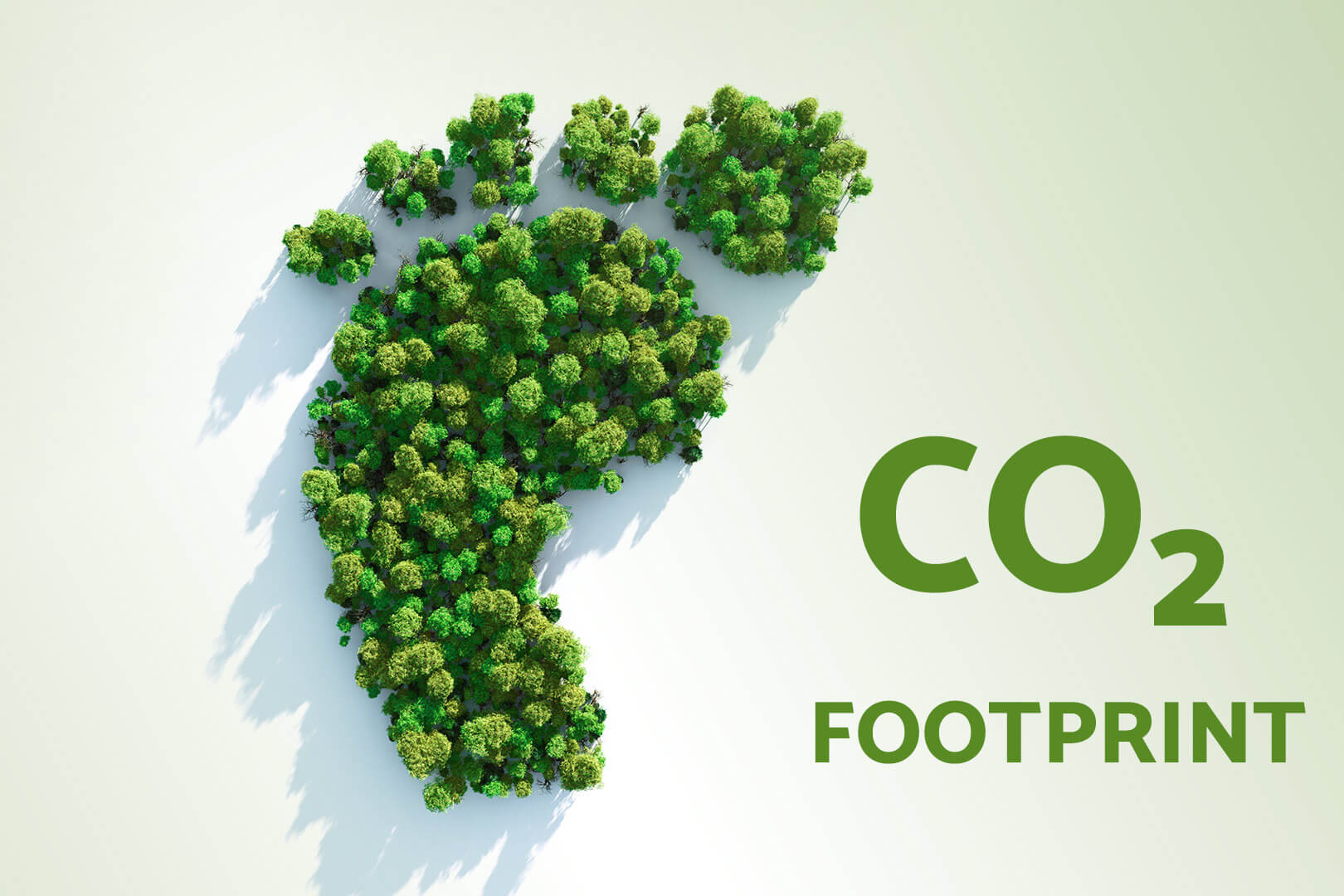 schaebens-co2-corporate-carbon-footprint-klimaneutral-klimaneutralitaet-bilanz-ausgleich