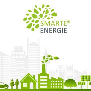 smarte-energie-schaeben-schaebens-energieberatung-nachhaltigkeit-umwelt-klima