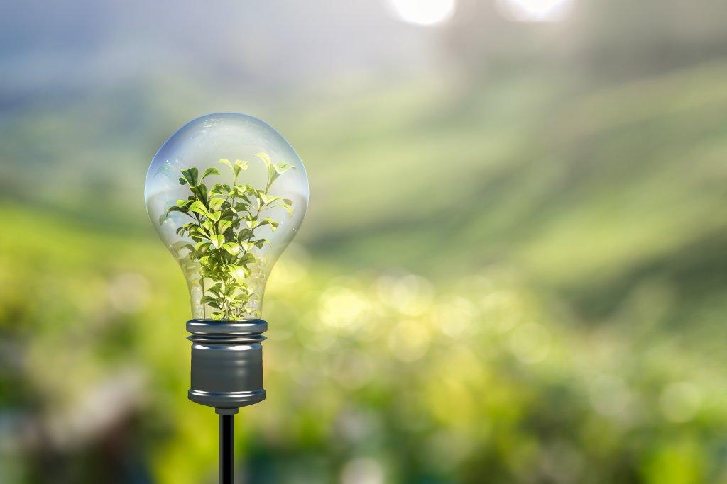 schaebens-nachhaltigkeit-ökostrom